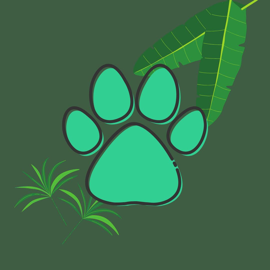 Papo Animal's Avatar